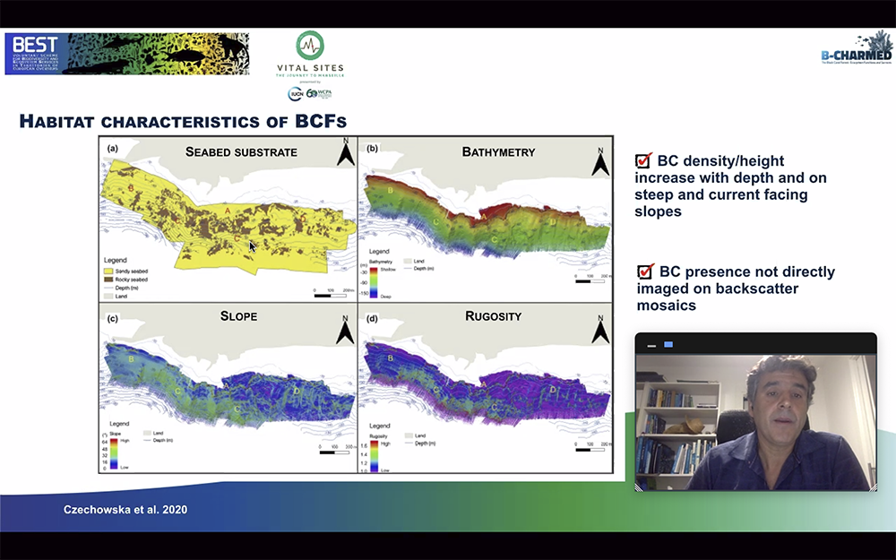 B-CHARMED participates in an IUCN webinar to explain its research about Lanzarote's black coral forests