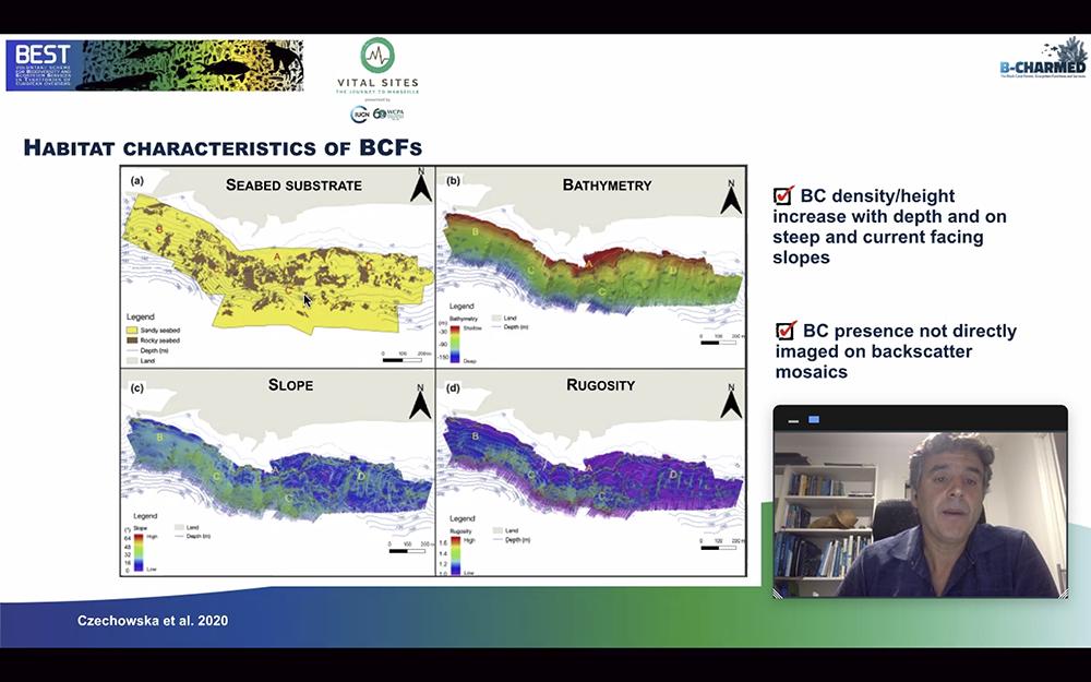 B-CHARMED participa en una webinar de la IUCN para explicar su investigación de los bosques de coral negro de Lanzarote